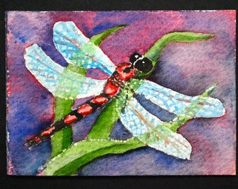 Dragonfly Watercolor ACEO Print