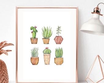 Cactus, Succulent, Plant Print/Home Print