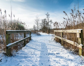 Bridge at Woodwalton Fen Blank Greetings Card