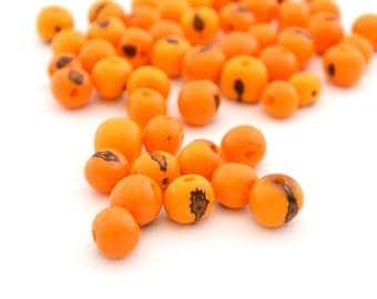 10 yellow orange round beads 6-10mm Acai seed