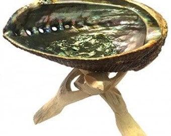 Abalone Shell Burner