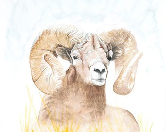 Golden Ram Archival Giclée Print on Archival Fine Art Paper Made of Cotton