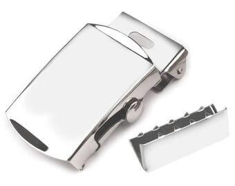 silver belt buckle style pistols