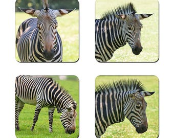 Set of 4 Zebra drinks coasters featuring award winning photography by UniquePhotoArts.