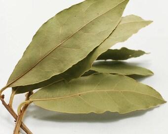 Daphne,  laurus nobilis, daphne spice, Kitchen Cooking material, organic daphne, Cooking material daphne, botanical spice