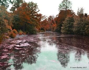 Autumn, Kew Gardens
