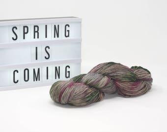 Spring is Coming - Hand Dyed Merino Yarn