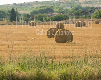 Rural photography Rustic Field Hay Bales Country Scenes Natural photography Digital download Wall Decor Farmland Landscape photos Fine Art
