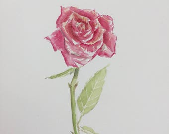 Red Rose Original Watercolor1