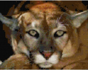 Puma Counted Cross Stitch Pattern PDF Download