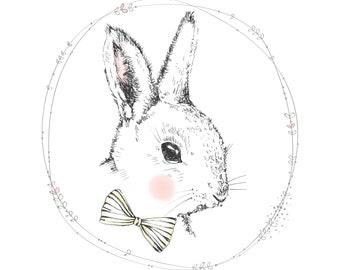 Funny Bunny x
