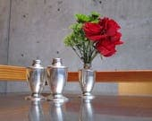 SMALL SILVER VASES.