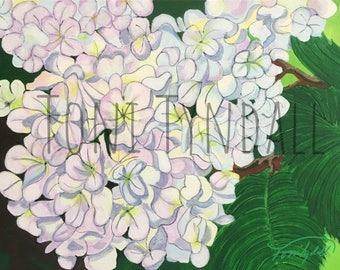 Hydrangeas Colorful Fun New Orleans Art