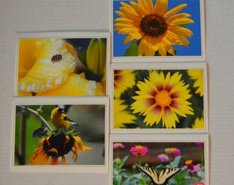5 Fine Art Nature Greeting Cards, Flower and Bird Notecard Set, Nature Stationary, Handmade Photo Greeting Cards