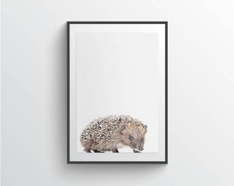 Hedgehog Print, Woodland animals, Woodlands nursery decor, Nursery print, Animal poster, Cute animals posters, Nursery wall art, Wall decor