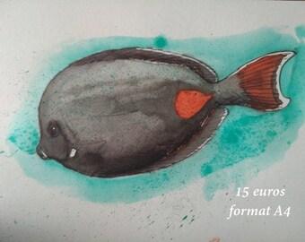 Ink surgeon fish