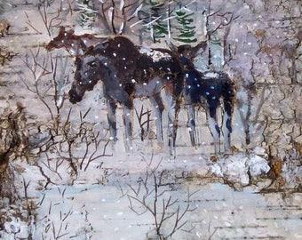picture moose winter landscape