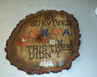 survived Irma,tree didn't. carved in oak.
