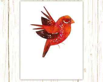 Strawberry Finch Print -- bird art -- colorful bird art by stephanie fizer coleman illustration