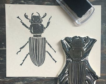 Patent Leather Beetle Stamp Hand Carved
