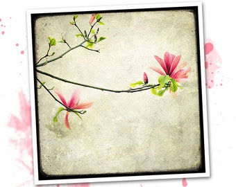 Magnolia branch - photo art signed 20x20cm