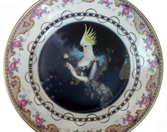 Nymphicus, Royal Mistress of Hollandicus Plate 8.75""