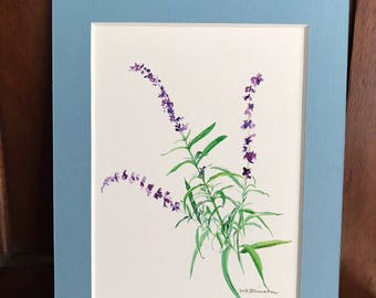 Blue salvia watercolor giclee print, floral art home decor, 5x7 inch BLUE matte