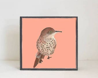 bird nursery art, animal print, nursery decor, boho nursery wall decor, coral nursery art, woodland animals nursery animals redtilestudio