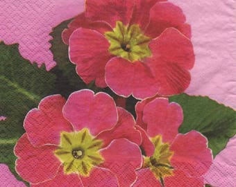 Pink 3237 - Set of 4 napkins Primroses