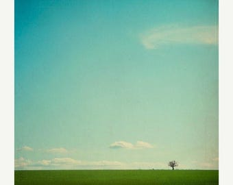 Nature Photography: Big Sky Fine Art Photography Landscape, Tree Wall Art sky blue white clouds green grass Nature Wall Art