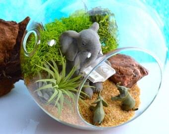"Elephant Terrarium Kit - Medium 5.5"" Round Air Plant Terrarium ~ Home Decor ~ 2 Baby Elephants With Mom Reading ~ Nature Terrarium ~ Gift"