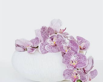 Cream Modernist Organic Modern Urchin Freeform vase