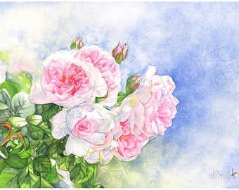 Roses watercolor painting print, A3 size, R23217, rose print of watercolor painting, pink roses watercolor print, Louise De Masi©