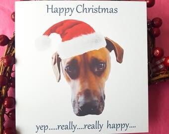 Funny Dog Christmas Cards - Grumpy Dog Xmas Humour - Bah Humbug - Sad Dog Santa Hat Card Pack for friends & family DX01