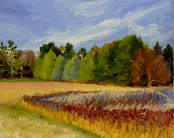 Small Landscape Oil Painting on Canvas Fall Meadow Color