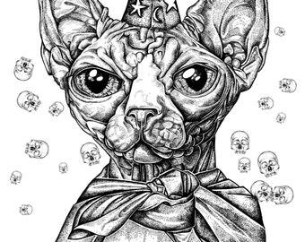 cat art print illustration wizard cat animal art bird illustration Mia Hawk