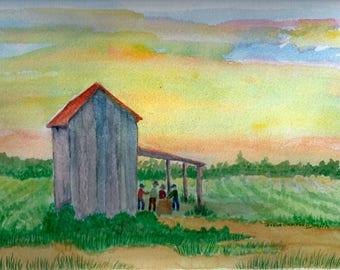 Eastern North Caolina Tobacco Barn at Sunset