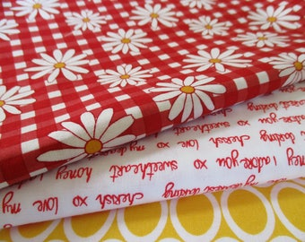 FREE SHIPPING, Quilting Fabric Bundle, Gingham Girls By Amy Smart , 1/2 Yard Ea,  Total 1.5 Yards,  Fabric by the Yard