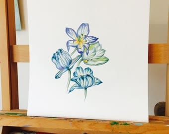 Blue Tulips, ORIGINAL ARTWORK, Tulips, Liliales, Indio Tulips, Pencil drawing, Tulips hyacintho, Detailed artwork, Subtle Fantasy.