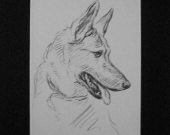 SALE Alsatian German shepherd Vintage Mounted 1936 'Mac' Lucy Dawson dog plate print Unique gift