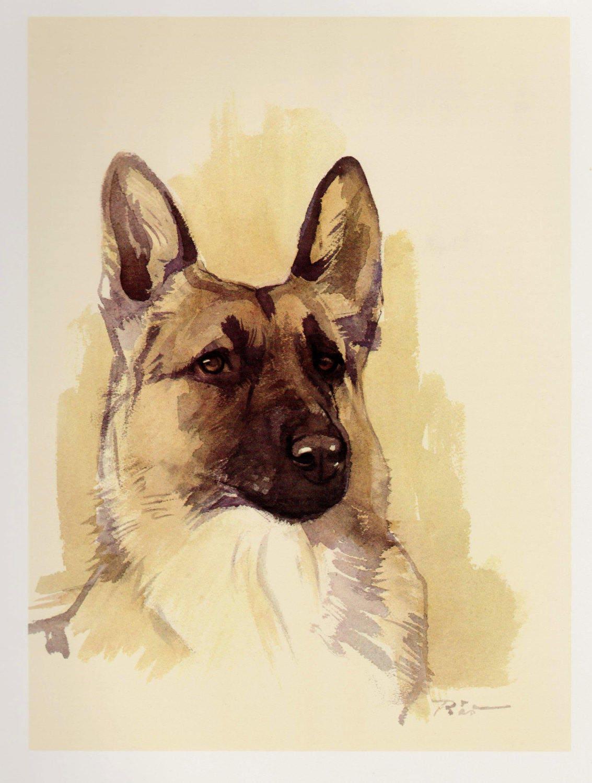 Vintage German Shepherd Dog Print Cottage Home Decor Dog