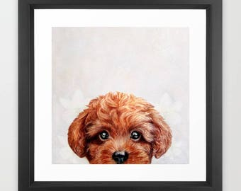 Toy poodle Reddish-Brown illustration Print With Frame