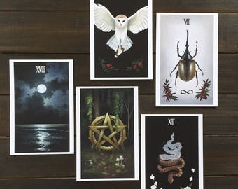 "Tarot print pack, 4x6"" giclee prints, major and minor arcana, death, the moon, the high priestess, strength, ace of pentacles"