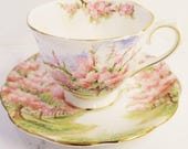 Vintage Tea Cup and Saucer /ROYAL ALBERT  Blossom Time Vintage Tea Party / Collectable teacup/Pink flowers
