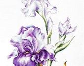 Irises SB2251 - Cross Stitch Kit by Luca-s