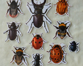 Insects, Bugs Flake Stickers - Pack of 10