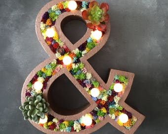 Large succulent Letter Light - light up letter - floral letter - botanical wedding - boho wedding - rustic wedding