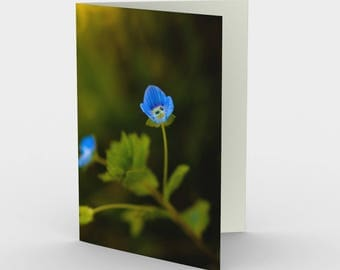 Blue Flower Cards, Blank Note cards, Nature Note Cards, Greeting Cards, Three Note Cards, 5x7 Cards, Floral Art Card, All Occasion Cards