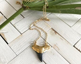 New! // Gold Dipped Fossilized Shark Tooth