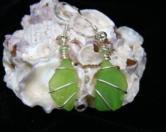 Lime Green Sea Glass Earrings
